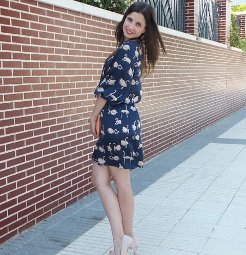 Vestido-cisnes-Dolores-Promesas-Bob-Barcelona-Bolsos-Tha-Fab-Shoes-9