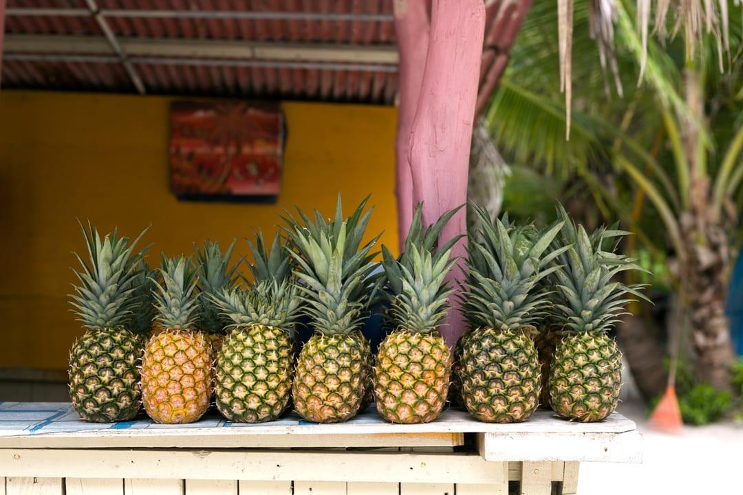 chiringuito playa en Isla Saona República Dominicana